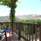 View from the Terrace, Where you Can Have a Glass of Wine under the Grape Arbor