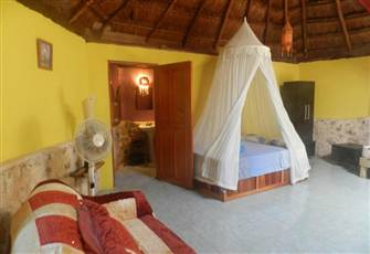 Relax & Enjoy the Peacefullnes of the Mayan Jungle!!