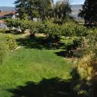 Fenced, 1/2 Acre Yard.  Cherry, Peach and Plum Trees, Grapes, Trampoline, Tree House, Swing Set. Space for Kids to Run around