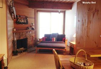 Cozy & Clean Studio with Kitchenette in the Moguls-Stunning Views and Smart Tv!