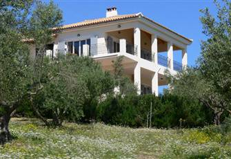 Villa in a Large Olive Grove Overlooking Sea and Mountains. Beaches near By.