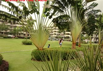 Royal Palm Residences - Grounds