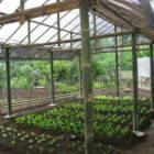 The Property has Ten Ares of Organic Gardens Designed Using the Principles of Permaculture
