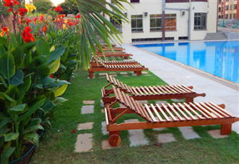 Sunset Paradise Apartments - Pool Loungers