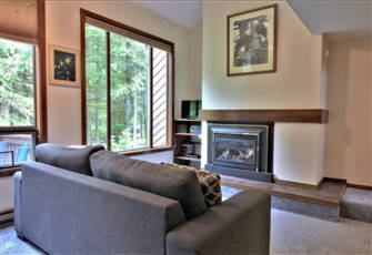Condo in Glacier, Wa - Fireplace, Washer/Dryer, Dishwasher, Sleeps-6!