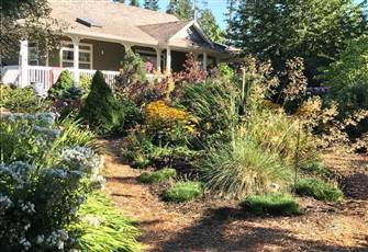 Relax in a Park-like Property Close to Courtenay, Comox and Cumberland
