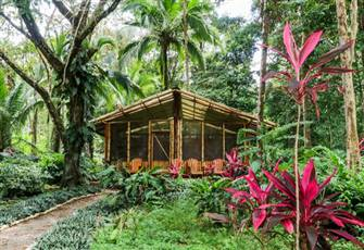 Rustic Cabin, in Tropical
