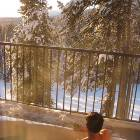 Enjoy the Hot Tub after a Great Day on the Slopes