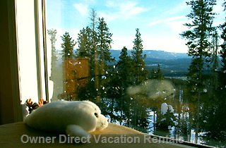 Places to Stay in Big White