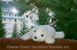 British Columbia Whistler Rentals