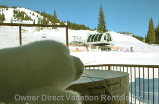 Silver Star Self Catering Rentals
