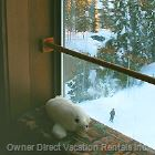 "This Property has the ""Owner Direct Seal of Approval""-Click Icon on Property Page for more Info"
