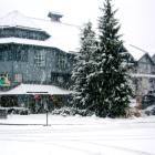 Glacier Lodge - Ski in / Ski out at Whistler's Blackcomb Mountain