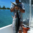 42lb Yellowfin Tuna