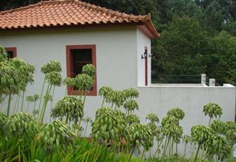 Property in direct contact with nature, enjoy the green and the peace