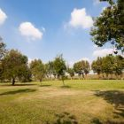 Orchard from the Villa