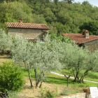 View of Gardens and Lovely Pool - There Are many Places to Sit Unwind and Relax and Enjoy the Tuscan Countryside