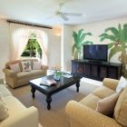 Media Room with Comfortable Sofas and Large Screen TV and DVD
