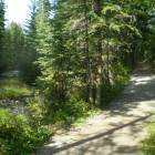 Canmore Trails