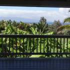 Large Well Maintained Yard with View to the Ocean