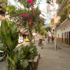 Discover Puerto Vallarta by Walk