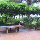 The Outdoor Table under the Wisteria's Pergola