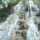 World Famous Dunns River Falls & Dolphin Cove Tours