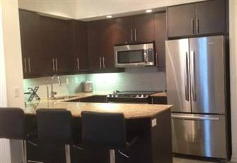 Luxurious Brand New Condo Downtown Toronto!