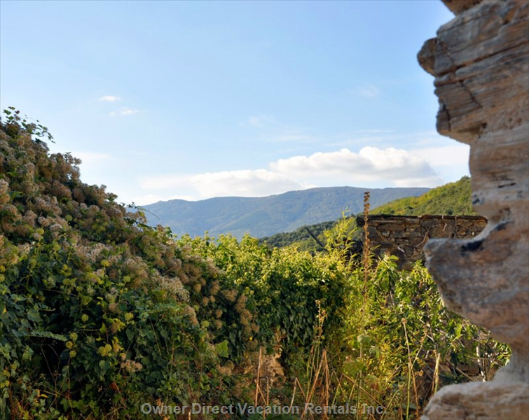 Retreat in the South of France - moutains, rivers, wine, and great food! ID#212750