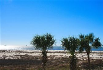 Enjoy Dauphin Island's Legendary