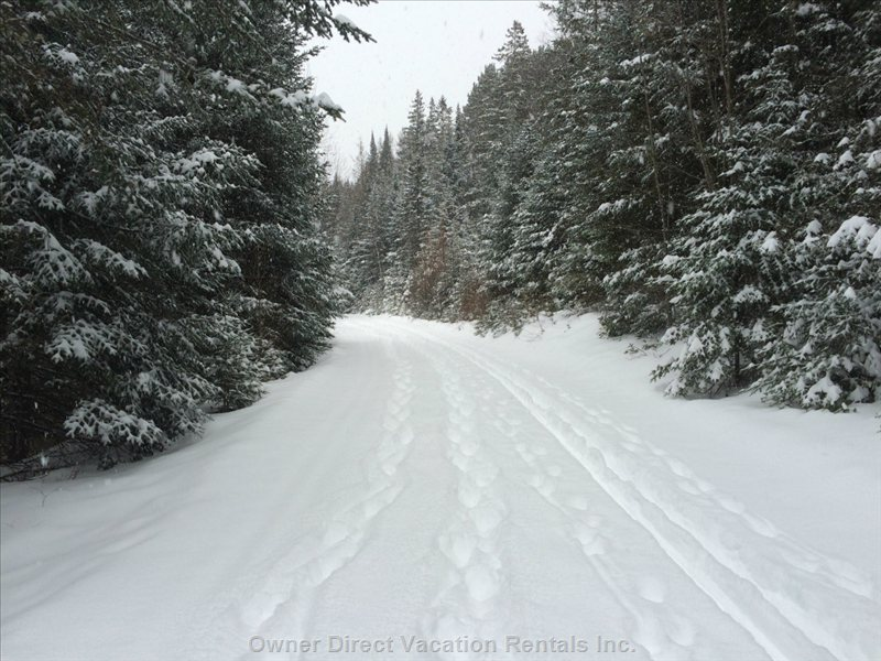 Cross Country Skiing, Snow Shoeing and Fat Biking is Just behind our House , 2 Min Walk