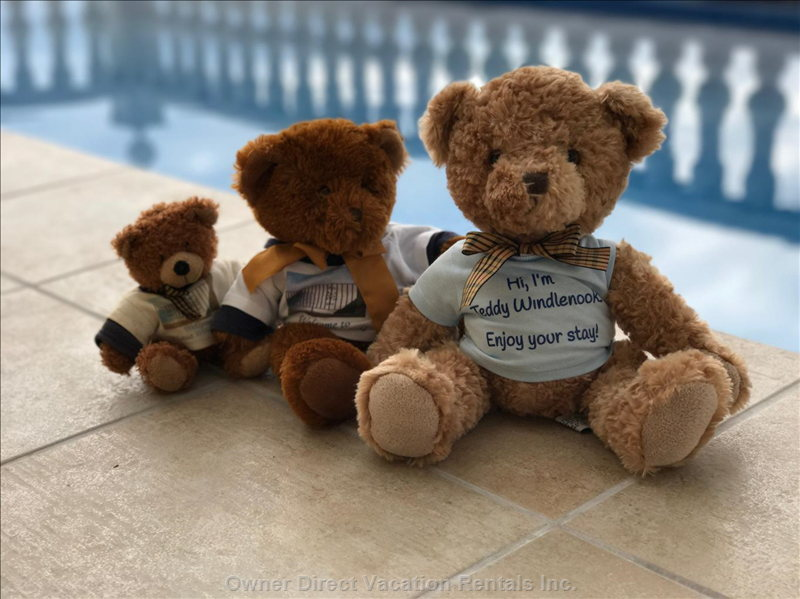 Three Generations of Teddy Windlenook Have Enjoyed their Holidays at Casa Windlenook!