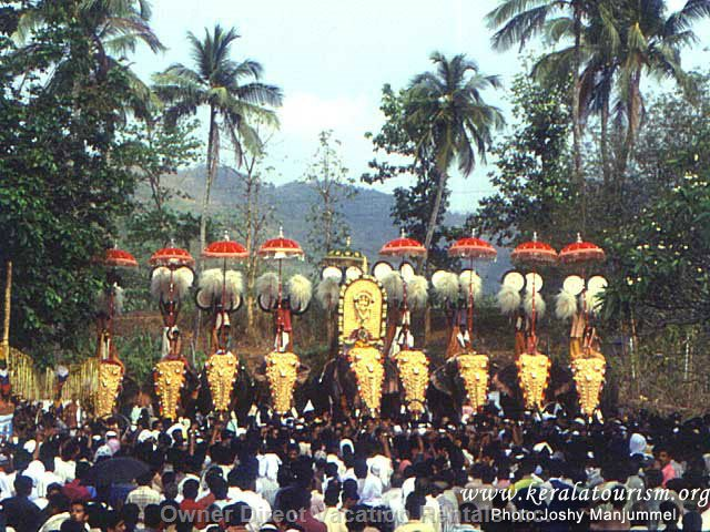 Elephant Show in Festivals