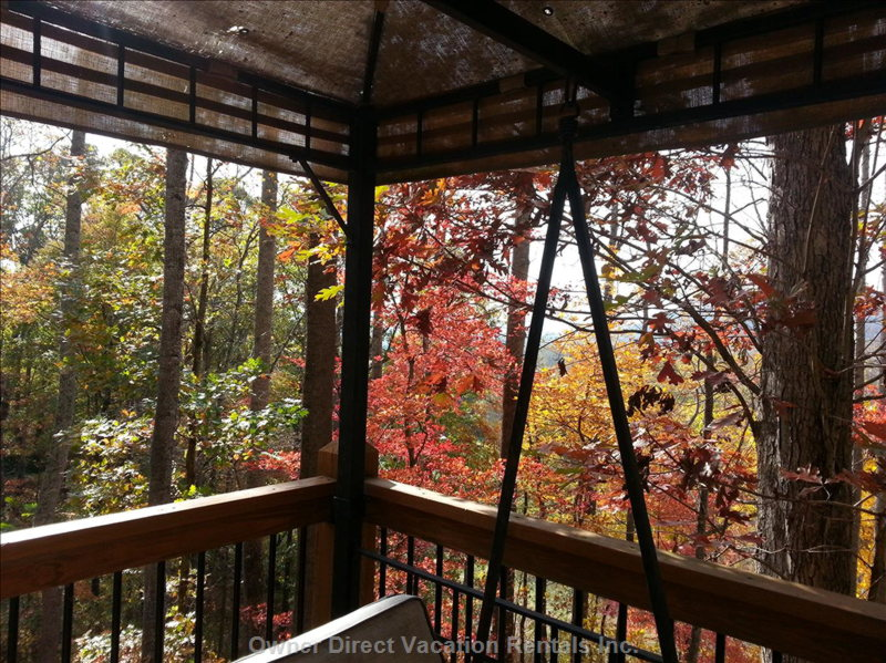 Fall Splendor on the Deck Swing