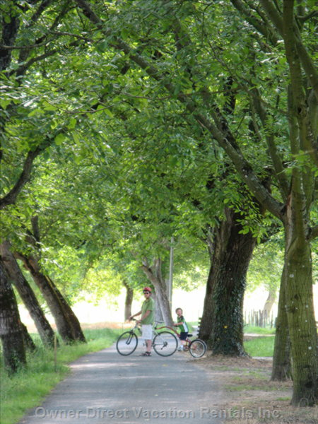 Nearby Biking Path for an Unforgettable Experience
