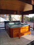 Large Hot Tub and Bbq on the Deck