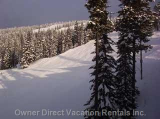 Spectacular View of Perfection Ski Run from your Window!