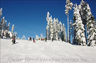 Another Bluebird Day at Big White...