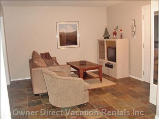 Comfortable Family Room with a New Hide-a-bed and Chair.