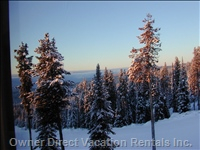 View of Sunrise Brightens Tops of Snow Pines from Living Room. Get Going for Fresh Tracks! - Bluebird!