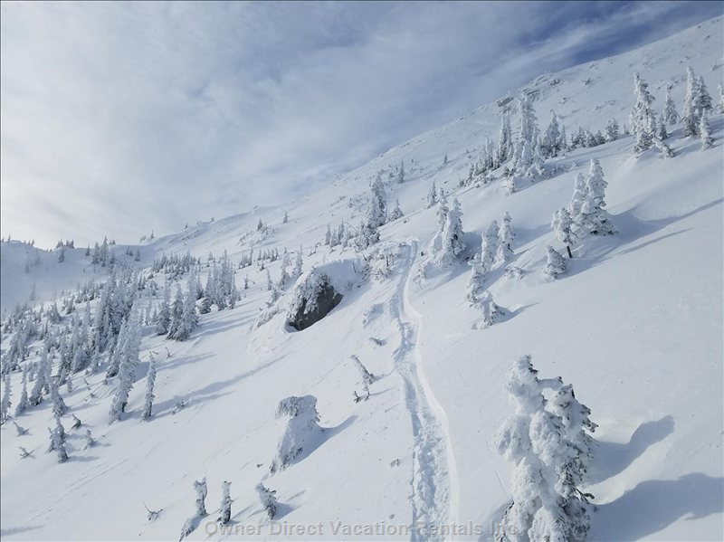 Why we Love Big White. Powder!