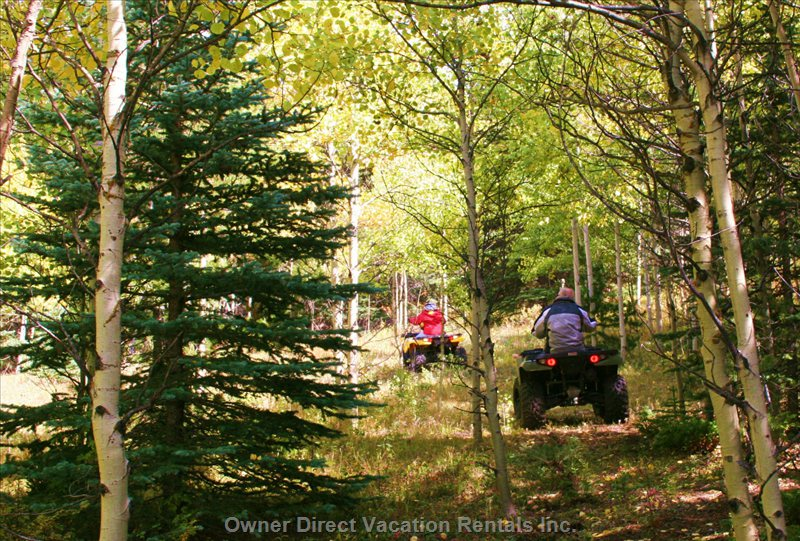 Atving on Ranch's Trails