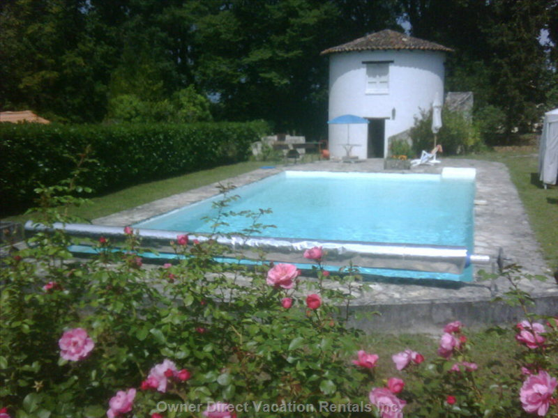 View Swimming Pool in the Garden