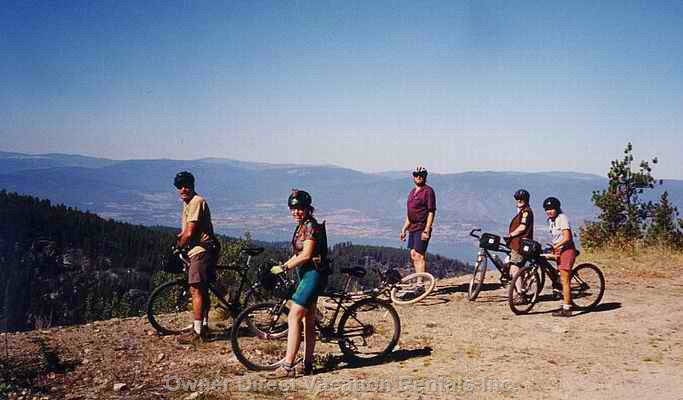 Bike Rides Ranging from Beginner to Extreme 8km to 100km Distances Or Mountain Biking up at Larch Hills.