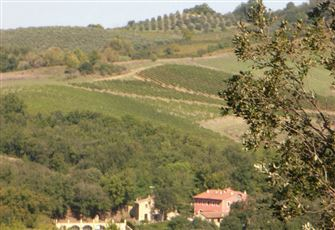 Located near San Gimignano (Siena), Tuscany.