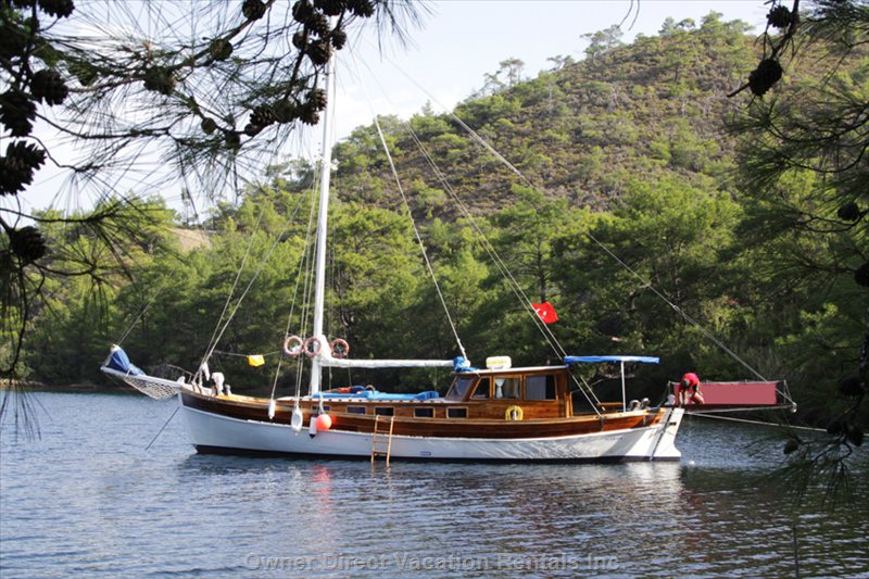 Dedikodu Trandil Gulet (Schooner Type) is a Traditionnal Wooden Boat