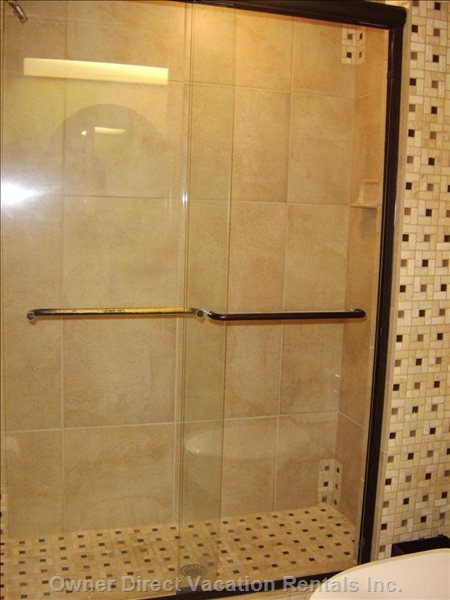 Master Bathroom Shower and Toilet