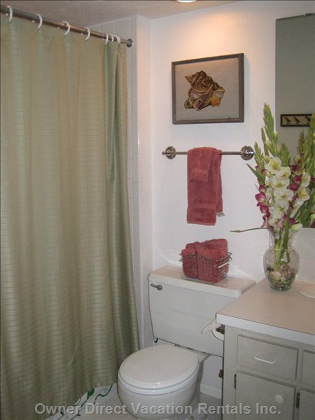 Guest Master Bathroom
