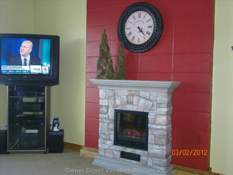 Electric Fireplace in Living Room