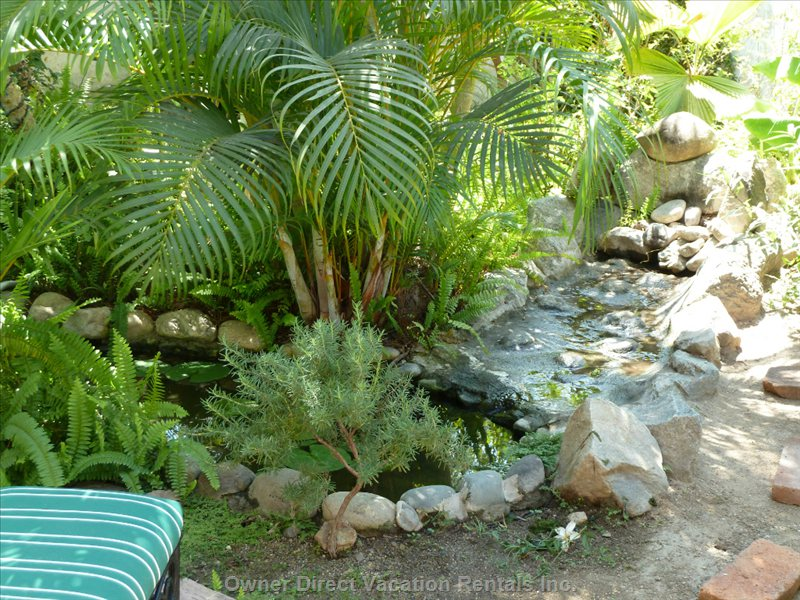 Backyard Mini-Waterfall